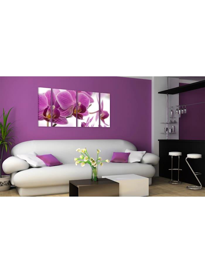 Wandbild Marvelous orchid