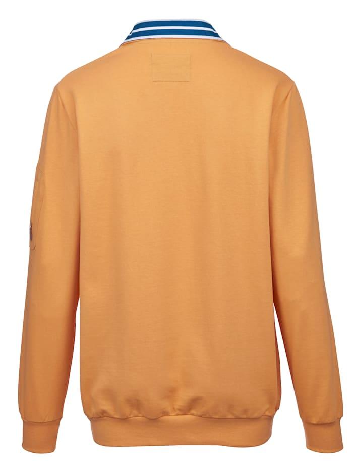 Sweatshirt mit Kontrastdetails am Kragen