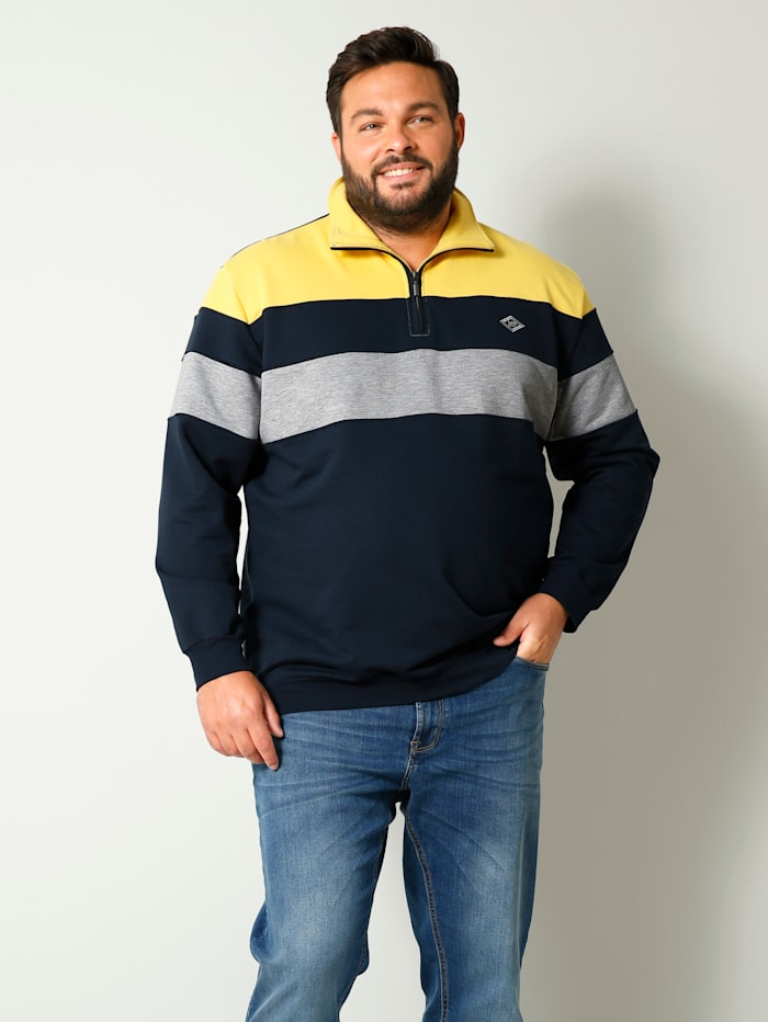 Men Plus Sweatshirt mit Troyerkragen, Grau