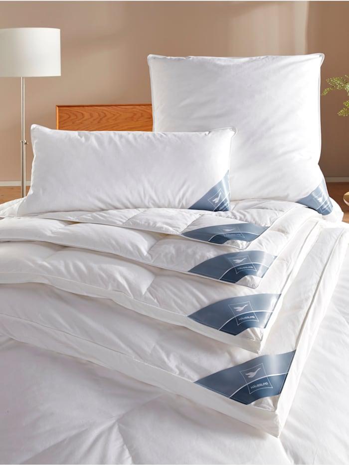 Häussling Daunen Bettenprogramm 'warm - wärmer - am wärmsten', weiß