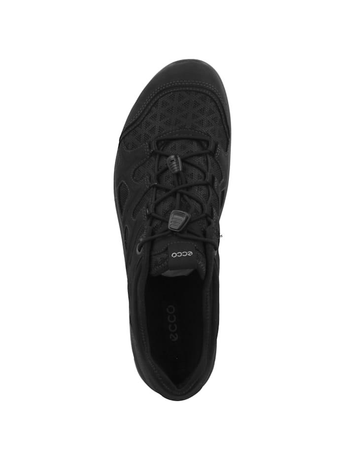 Sneaker low Terracruise LT