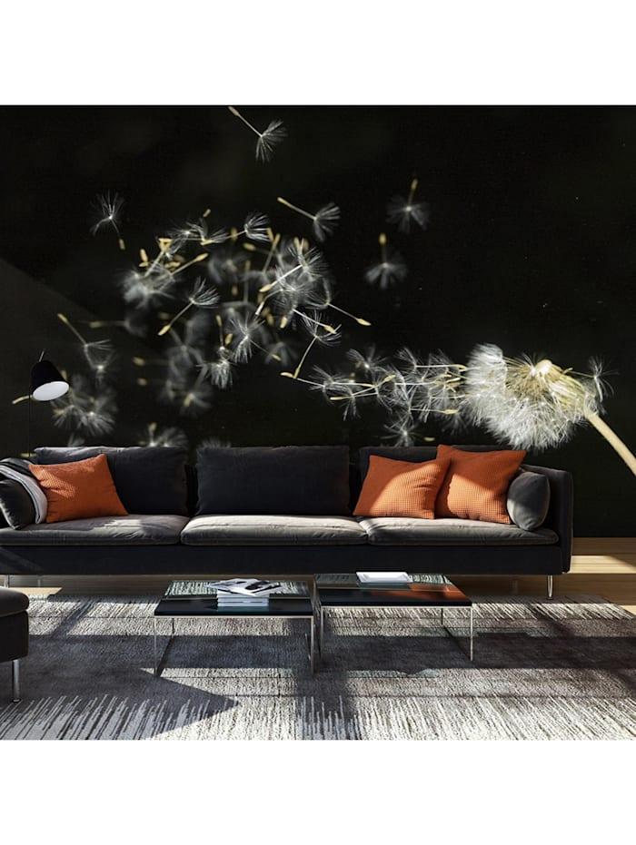 artgeist Fototapete Pusteblume im Wind, Schwarz,Weiß