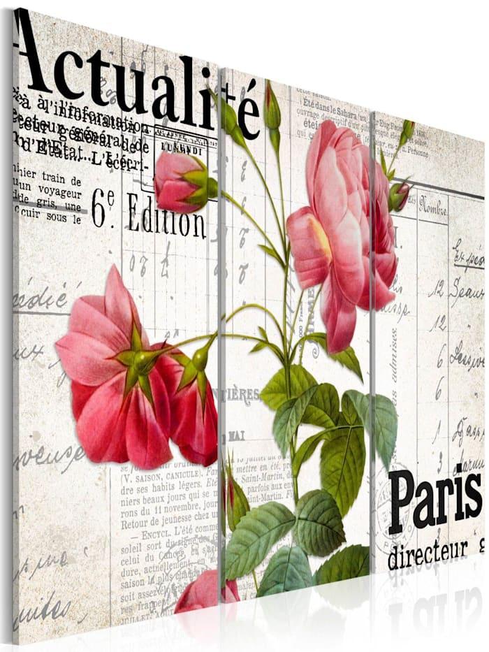 artgeist Wandbild Paris directeur, Schwarz,Grün,rosa,Weiß
