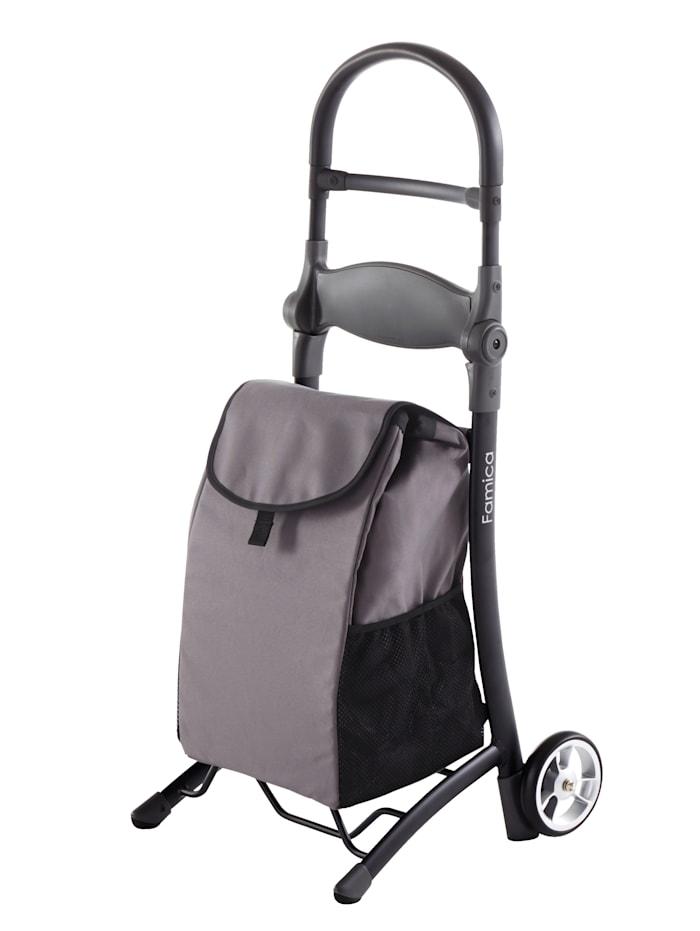 Rehaforum Chariot de courses pliable 'Famica', Anthracite