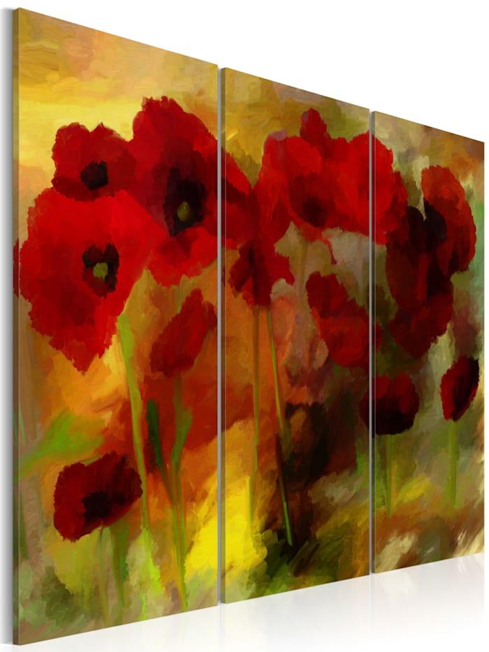 artgeist Wandbild Sublime Mohnblumen, Grün,Gelb,Rot