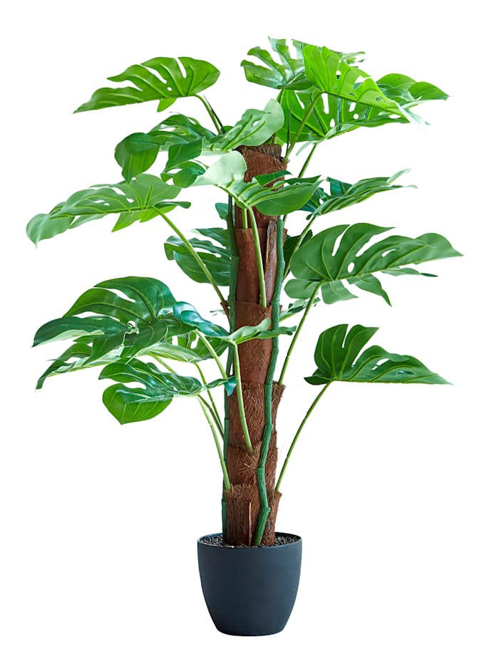 Umelá rastlina, zelená