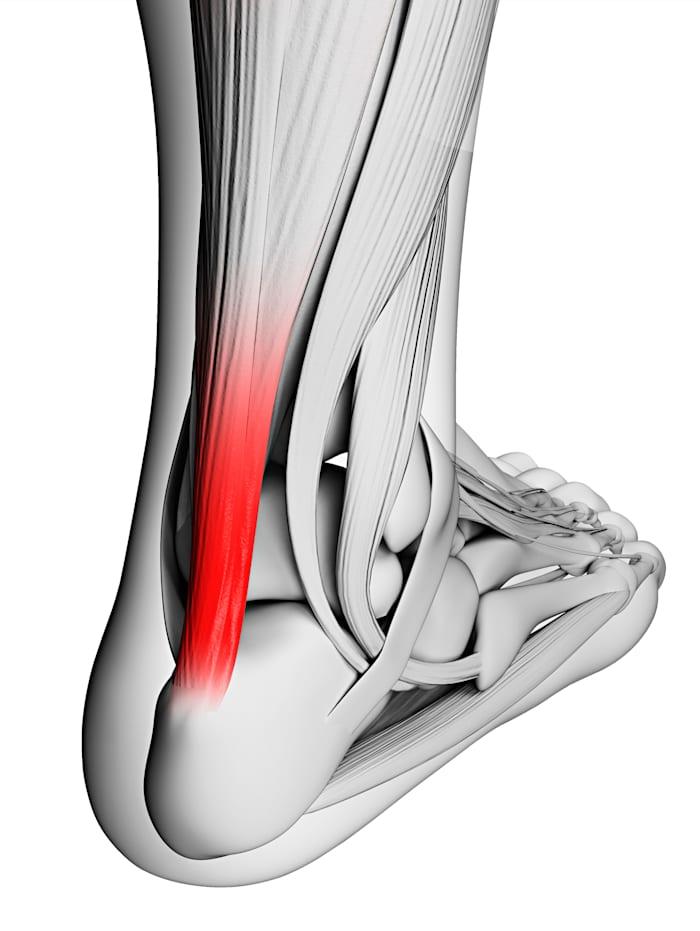 Fußknöchel-Bandage , 1 Paar