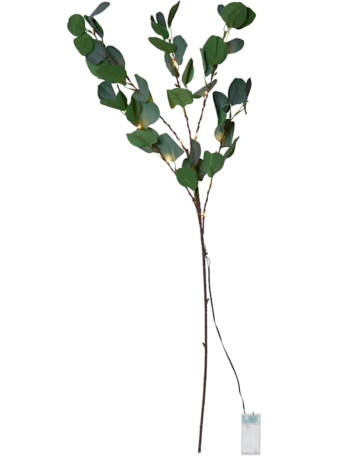 Star LED-Eukalyptuszweig, grün