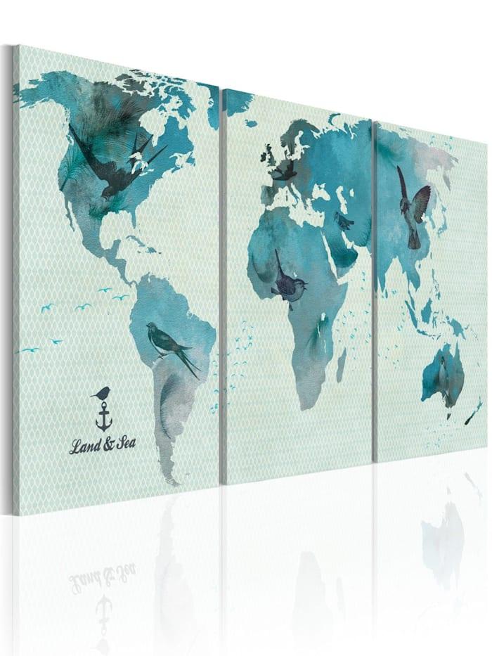artgeist Wandbild Ornithologische Weltkarte, Himmelblau,Türkis