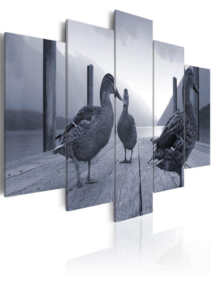 artgeist Wandbild Enten am See, black and white