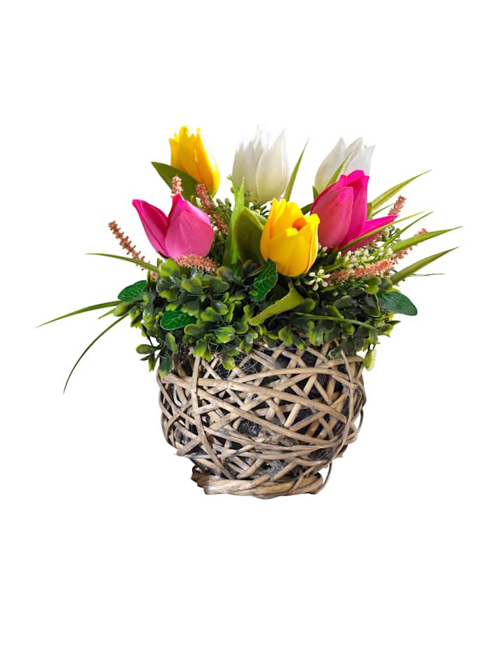 Tewa Tulipanoppsats, flerfarget