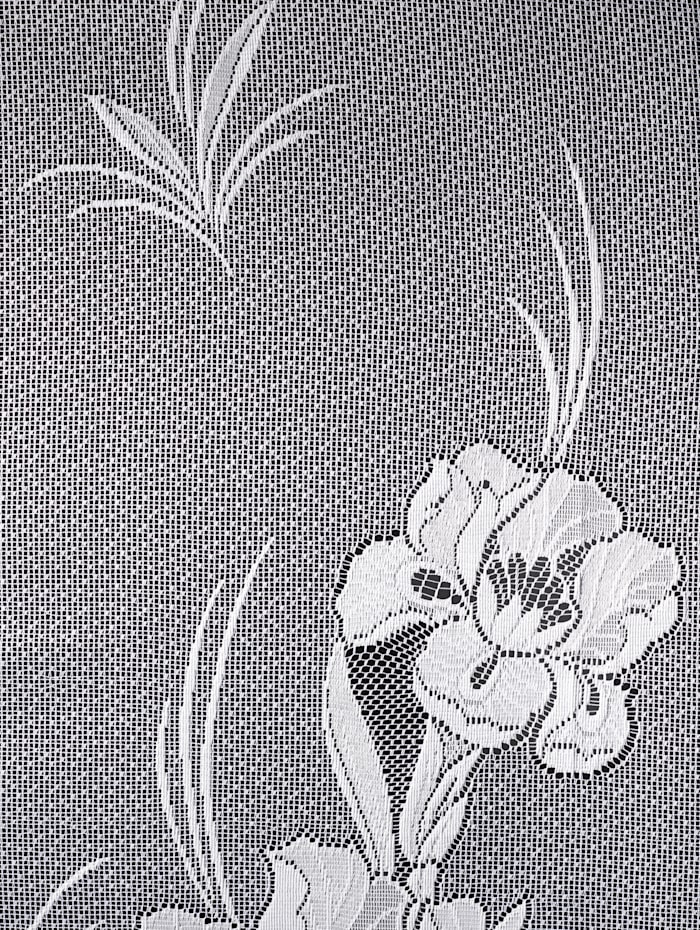 Gardine 'Iris'