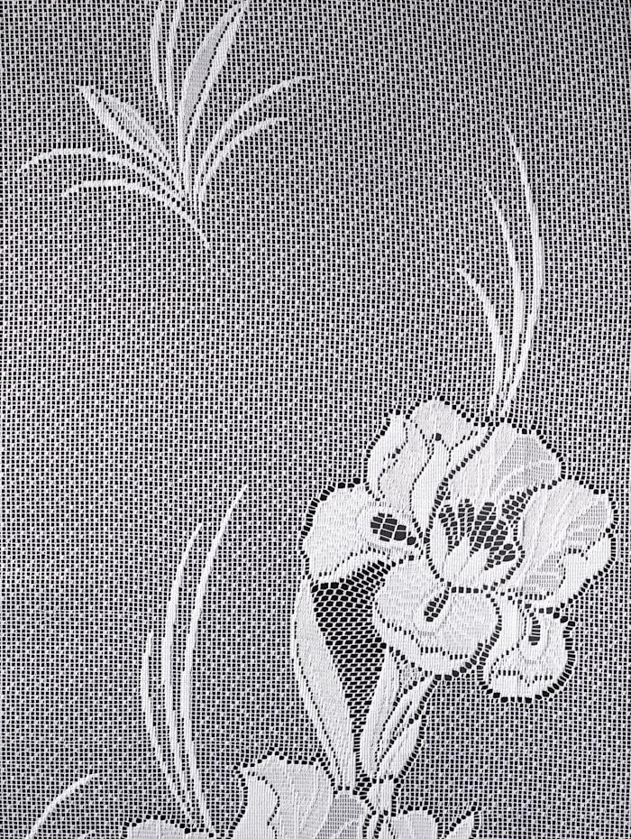 Záclona Iris