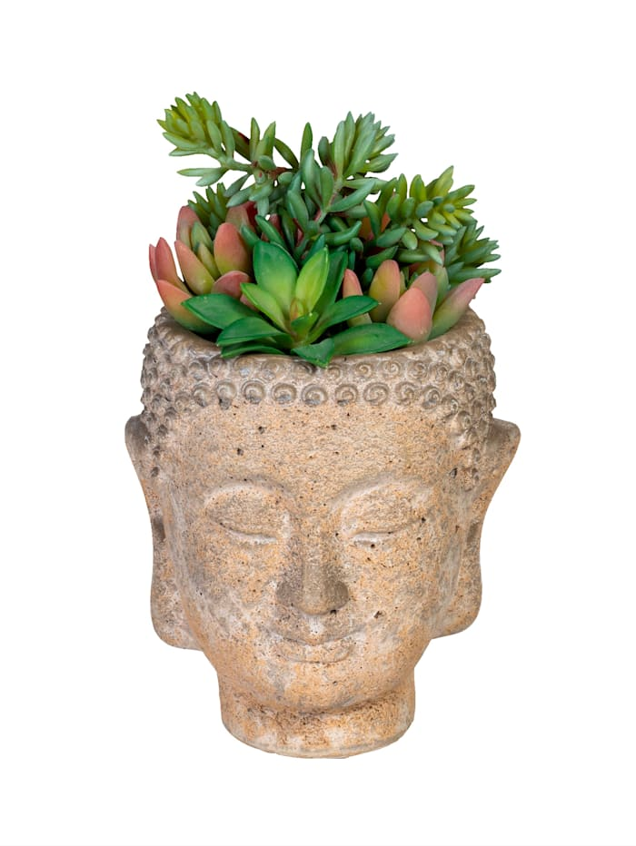 Globen Lighting Succulente dans un pot Bouddha, vert/rose