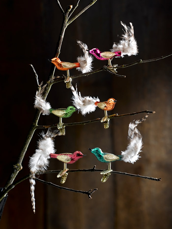 6 julgransfåglar