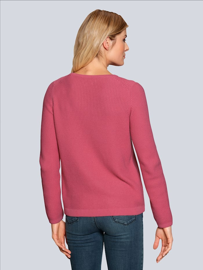 Pullover in frischer Farbstellung