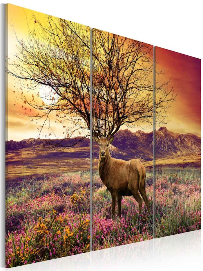 artgeist Wandbild Originelles Geweih - Triptychon, mehrfarbig