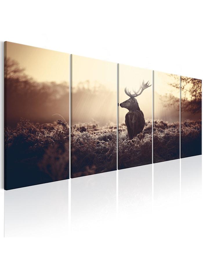 artgeist Wandbild Stag in the Wilderness, Beige,Schwarz,Braun