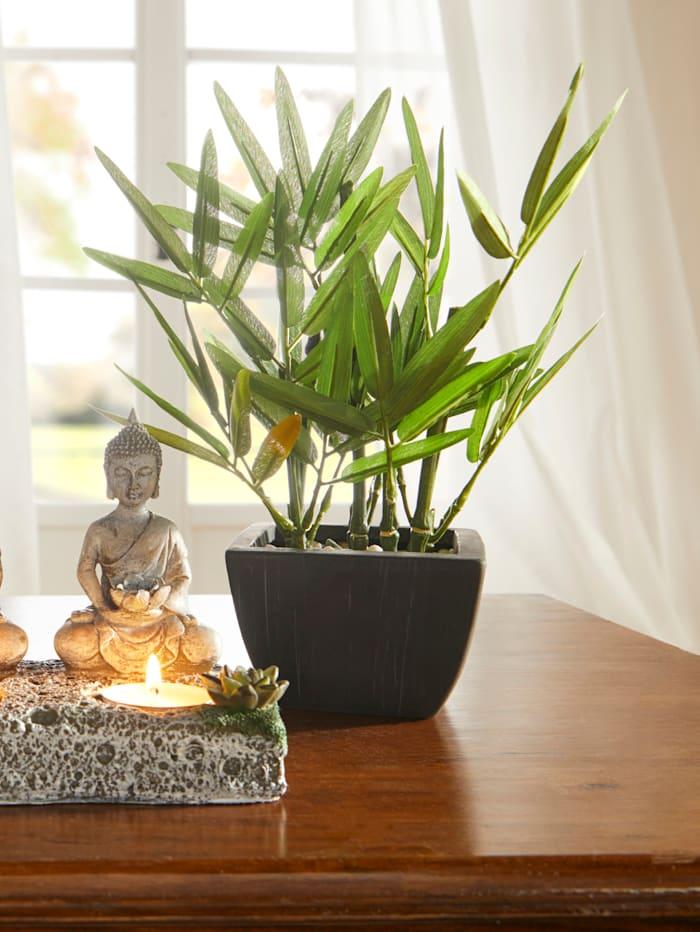 KLiNGEL Dekopflanze Bambus, Grün