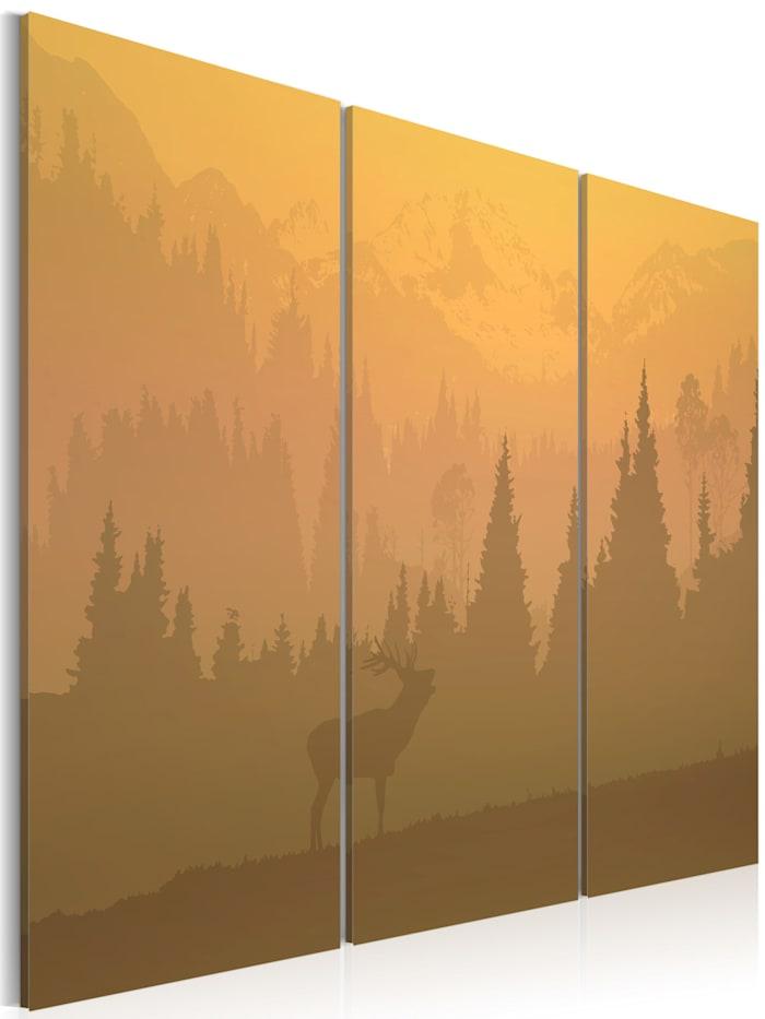 artgeist Wandbild Naturschutzgebiet, Orange,Braun,Gelb