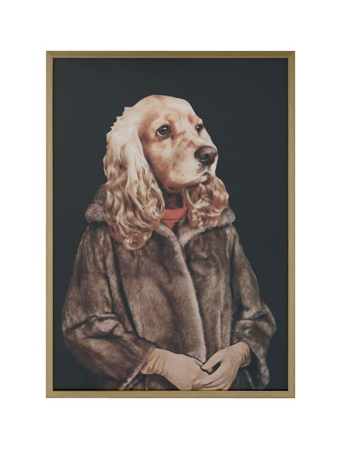 IMPRESSIONEN living Bild, Hund, braun