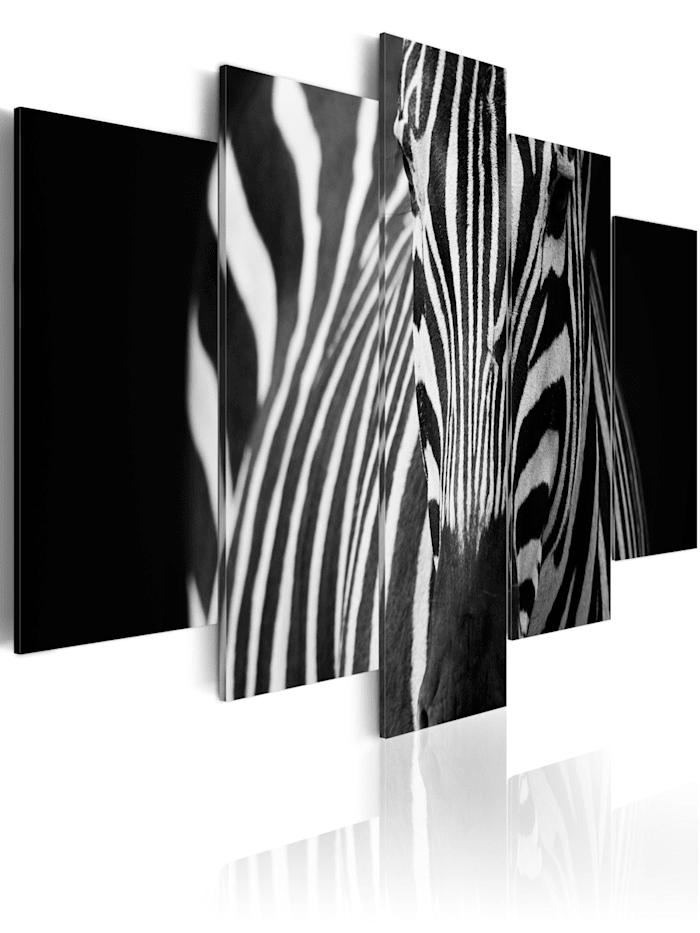 artgeist Wandbild Zebra look, schwarz-weiß