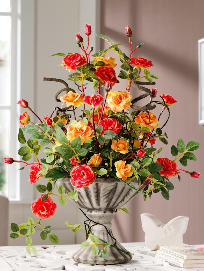 Divé ruže v keramickom kvetináči, Oranžová