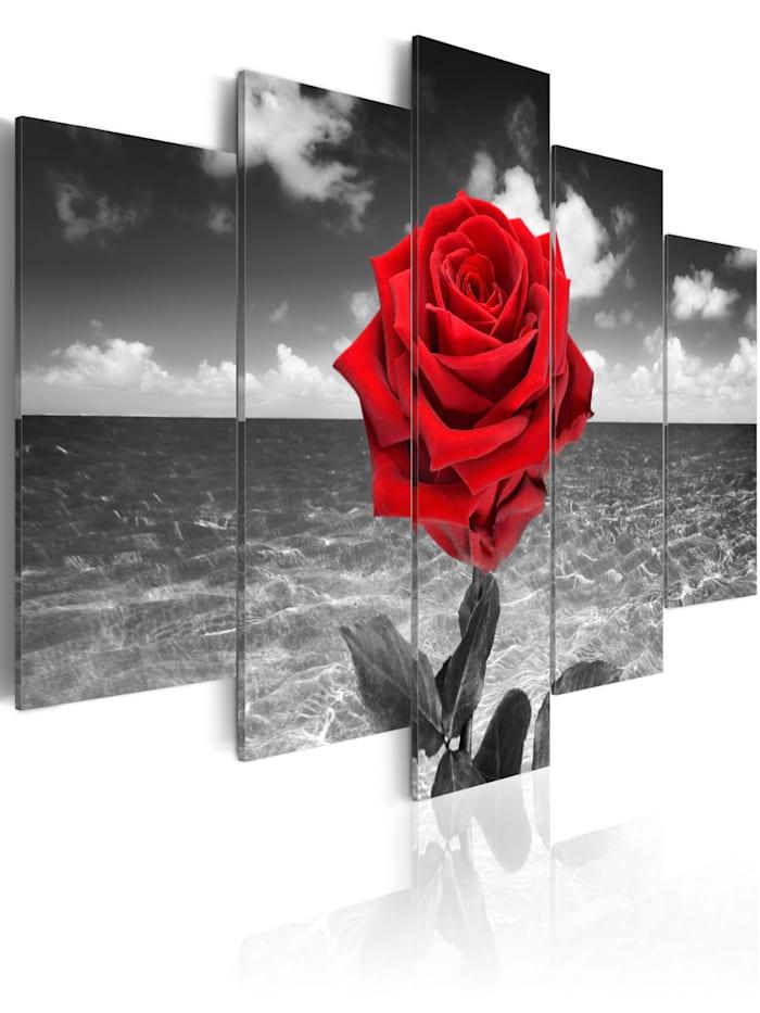 artgeist Wandbild Colour of love, grey,red,white
