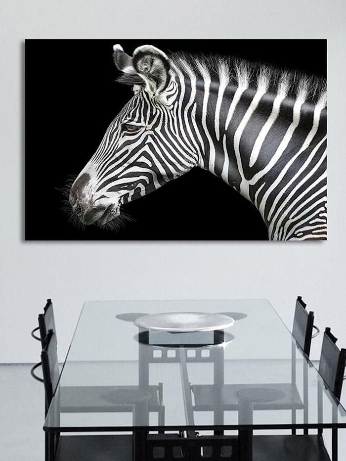 Acrylglasbild, Zebra