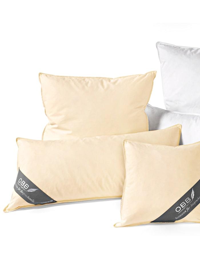 Daunen und Federn Kissenprogramm