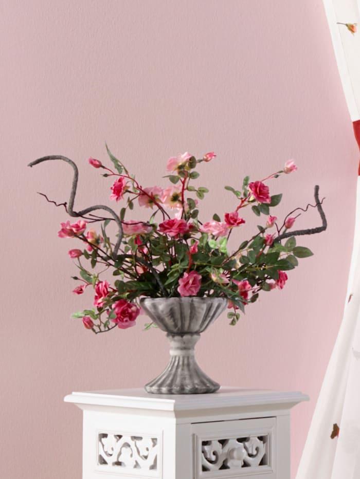 Villroser i potte, rosa