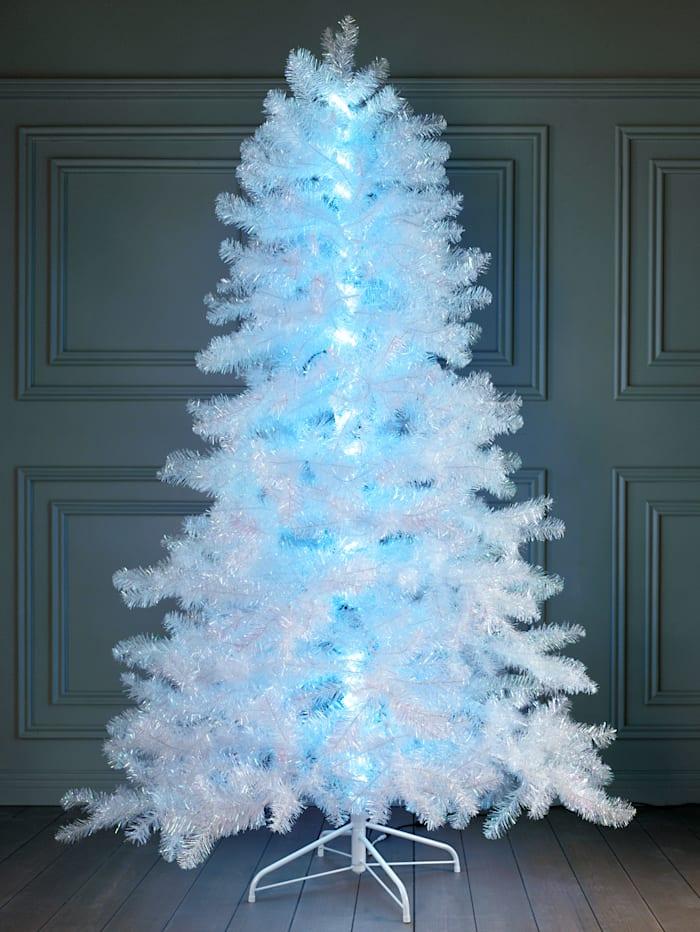 Tannenbaum weiß