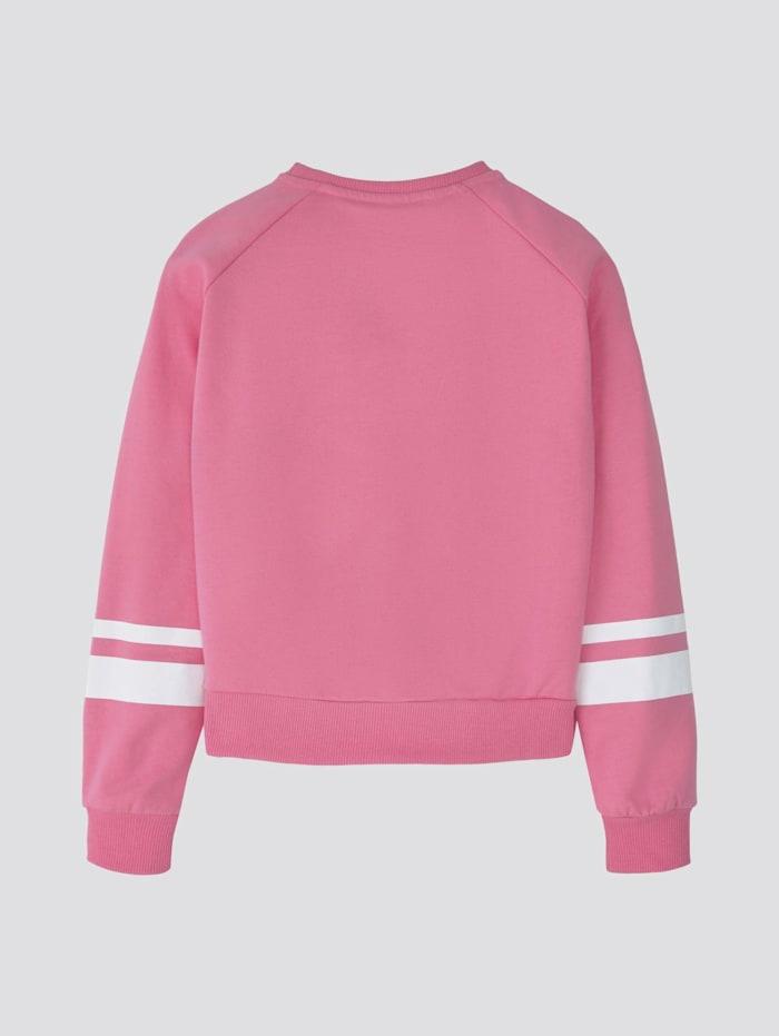 Sweatshirt mit Print und Streifen