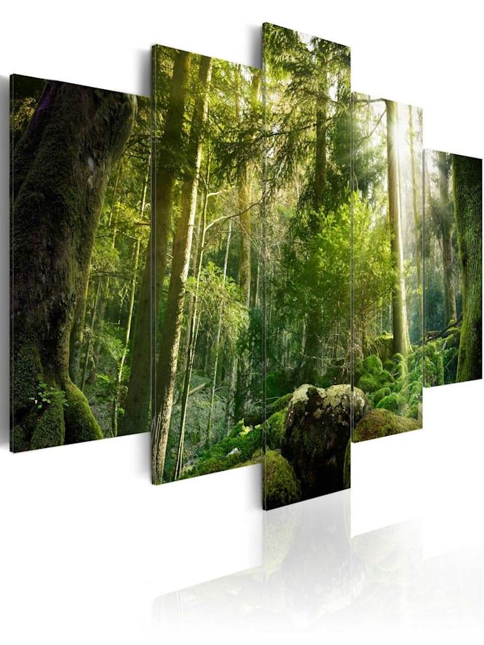 artgeist Wandbild The Beauty of the Forest, Braun,Grün,Gelb