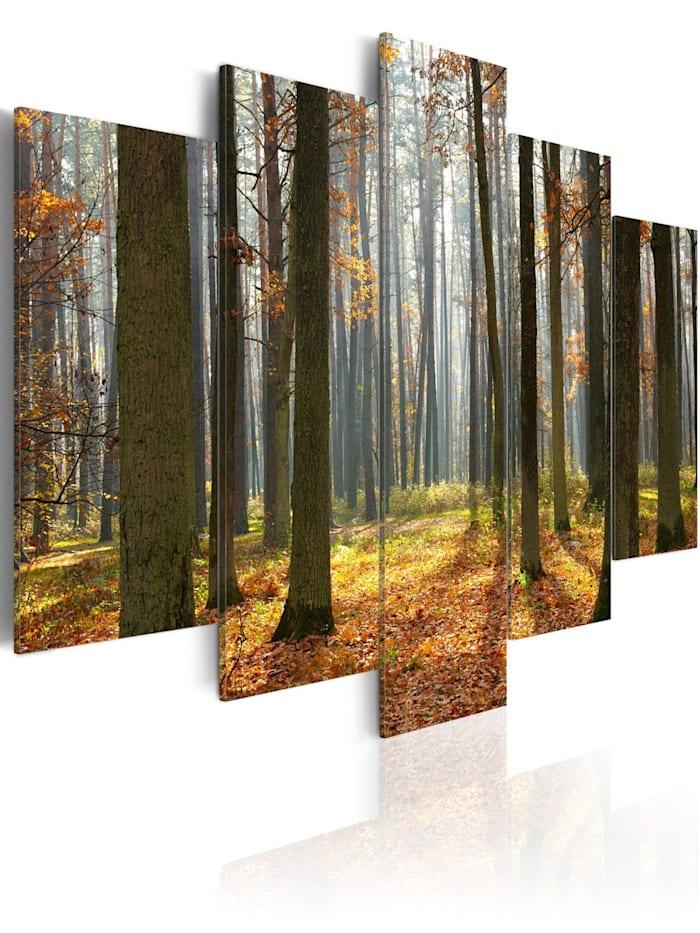 artgeist Wandbild Malerische Waldlandschaft, Grün,Orange,Braun
