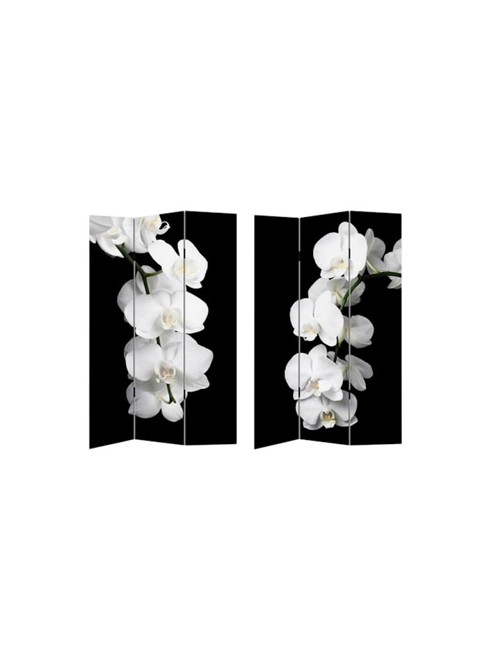Paravent Orchidee