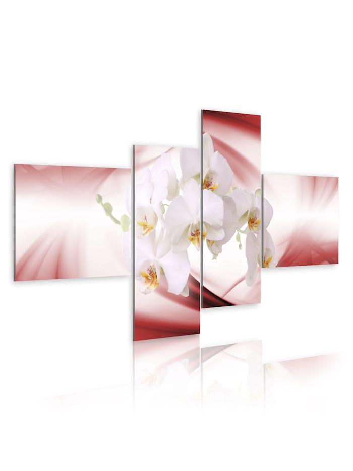 artgeist Wandbild Orchideen in Rosa, Weiß,Orange,Rot