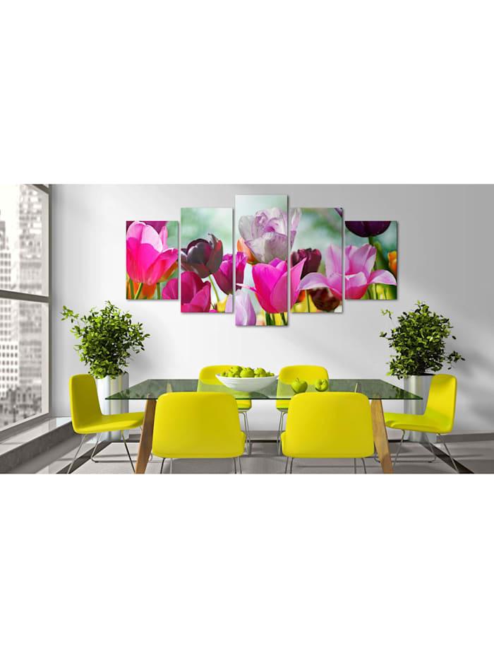 Wandbild Pink & Co.