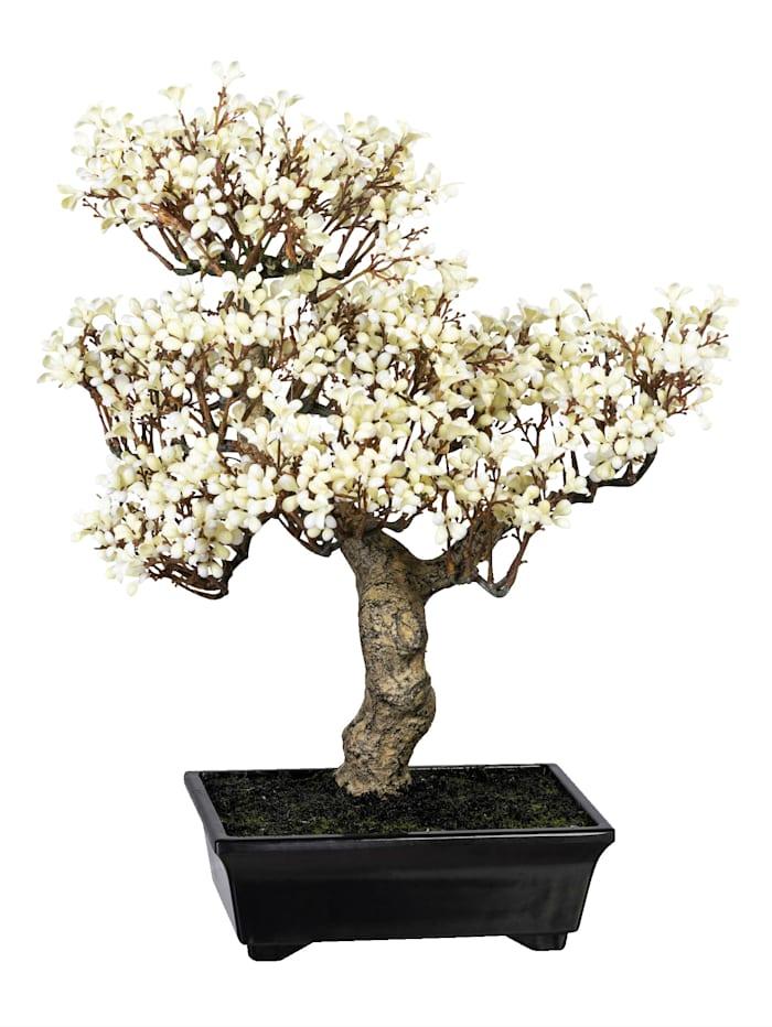 Globen Lighting Chinesischer Winterblütenbonsai, Weiß
