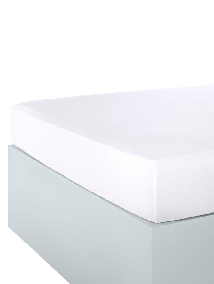 Webschatz Stretchlaken, hvit