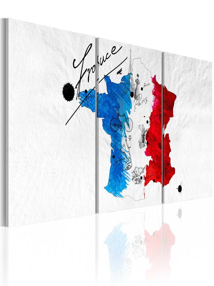 artgeist Wandbild Landkarte von Frankreich, Schwarz,Rot,Weiß,Blau
