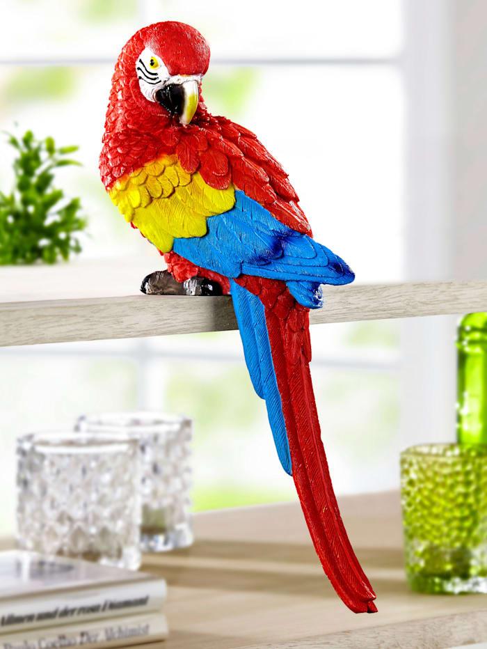 Kantenhocker Papagei, mehrfarbig