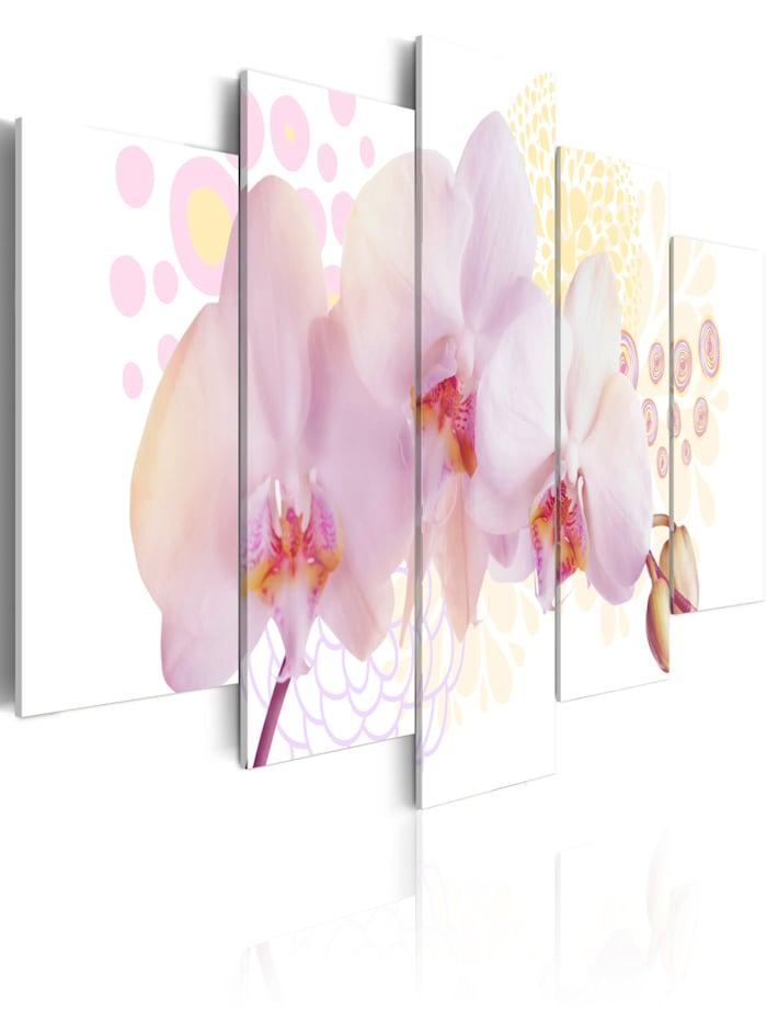 artgeist Wandbild Feine Orchidee, Weiß,Gelb,rosa