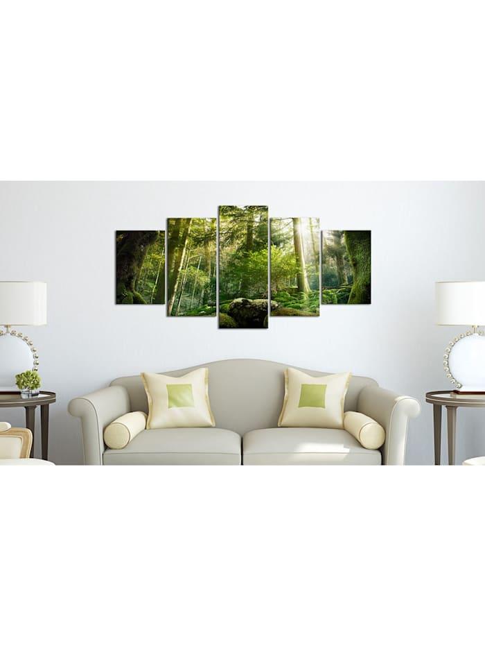 Wandbild The Beauty of the Forest