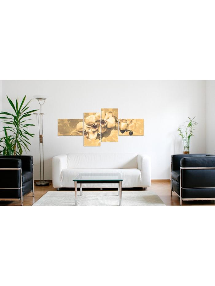 Wandbild Orchideen in Sepia