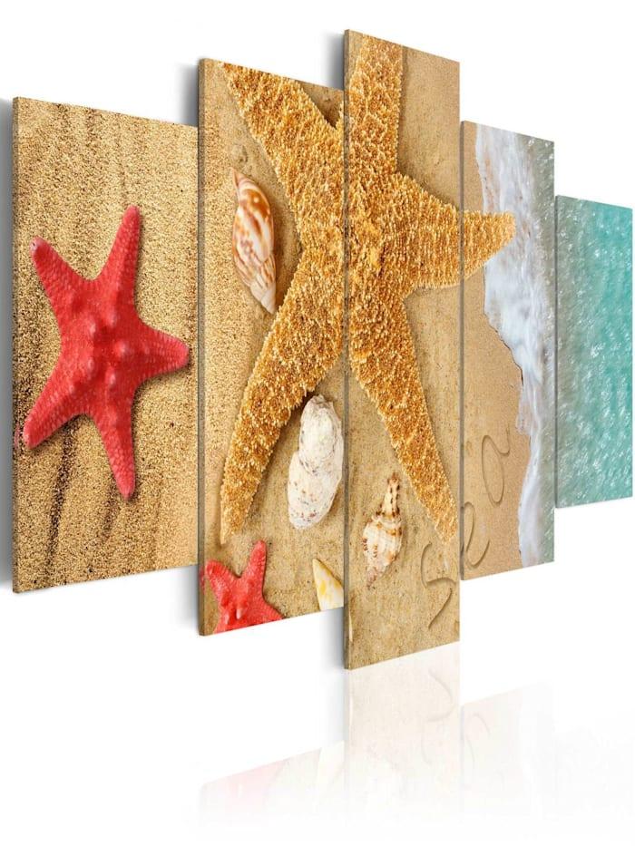artgeist Wandbild Sea treasure, Rot,Türkis,Weiß,Beige