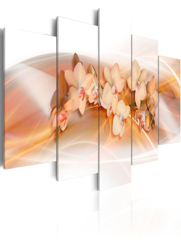 artgeist Wandbild Orchidee - Schmuckstück des Hauses, Creme,Orange,Weiß,Braun