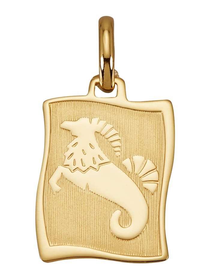 "Amara Or Pendentif avec pierre de naissance ""Capricorne"" en or jaune 585, Coloris or jaune"