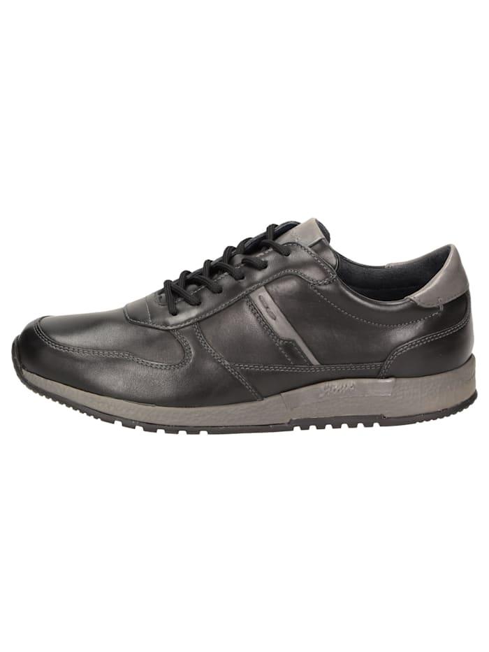 Sneaker Rojaro-700