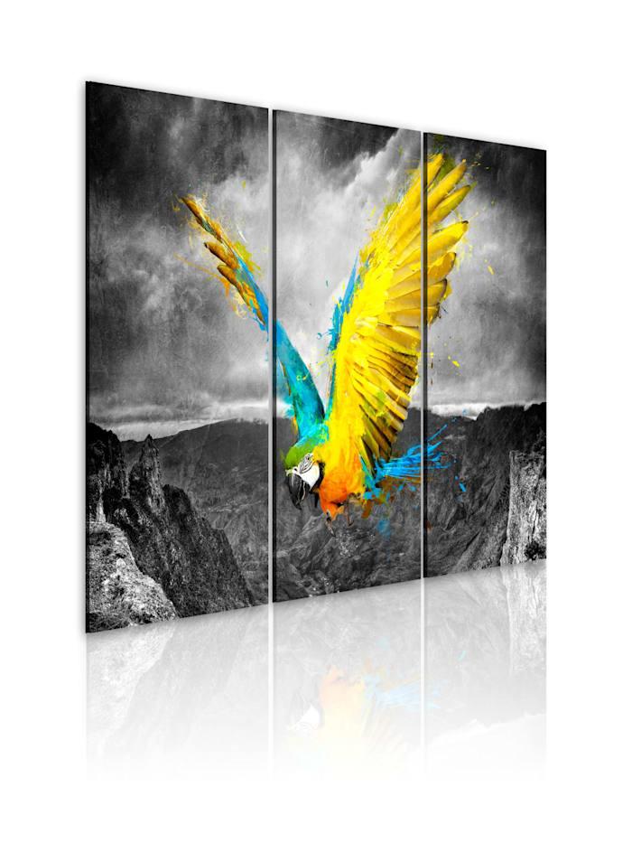 artgeist Wandbild Paradiesvogel - Triptychon, schwarz-weiß,Türkis,Gelb